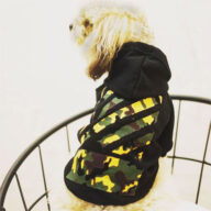 Pet Apparel, Wholesale Pet Clothes 06-1340
