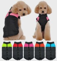 Dog Clothes Pet Accessories 06-1020