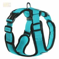 wholesale custom adjustable dog chest harness-109-0002.jpg